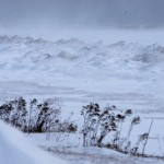 米国では珍しい嵐が麻痺生活