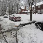 バージニア州のボストンから月曜日の夜には、光や大雪があった