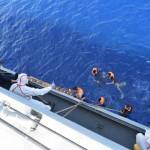 地中海で過去1週間の移民の沈没船は700人以上が死亡していると懸念されています