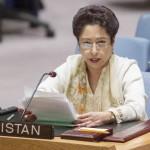 パキスタンのマレア・ロディ大使