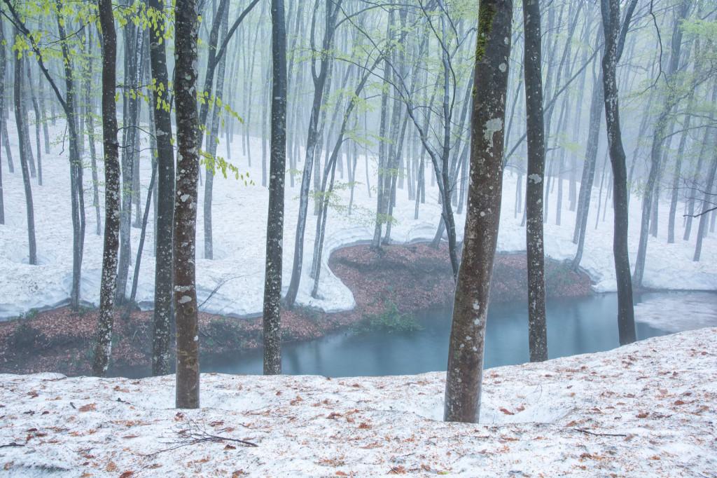 毎年雪の降る460インチは十日町に落ちる