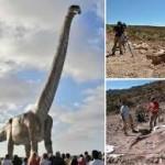 世界最大の恐竜は10頭以上のゾウです