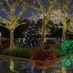 フロリダの植物園にも100万個のLEDライトが装飾されています