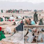 アフガニスタンでの内戦と飢amineにより何百もの家族が空の下で暮らすことを余儀なくされた