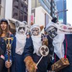 毎年恒例の猫まつりは日本の首都東京の神楽坂で祝われます