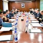 パキスタンはソハイル・マフムード外務大臣が率い、日本は金杉外務副大臣が代表を務めた。