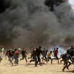 ヨルダン川西岸のユダヤ人入植地と軍事国家テロに対する平和的な集会での残忍な武力行使